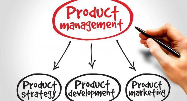 Product management mind map, business concept